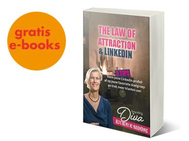 banner-ebooks branding diva LOA